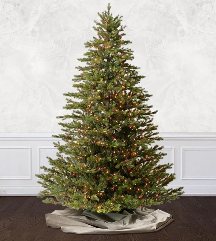 10 ft - 12 ft Christmas Trees
