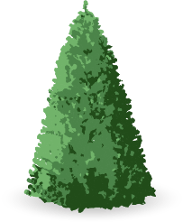 Artificial Christmas Tree Assembly Instructions.Christmas Tree Assembly Guide