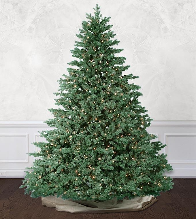 ca0270247fde Deluxe Emerald Vermont Spruce Artificial Christmas Trees- Platinum ...