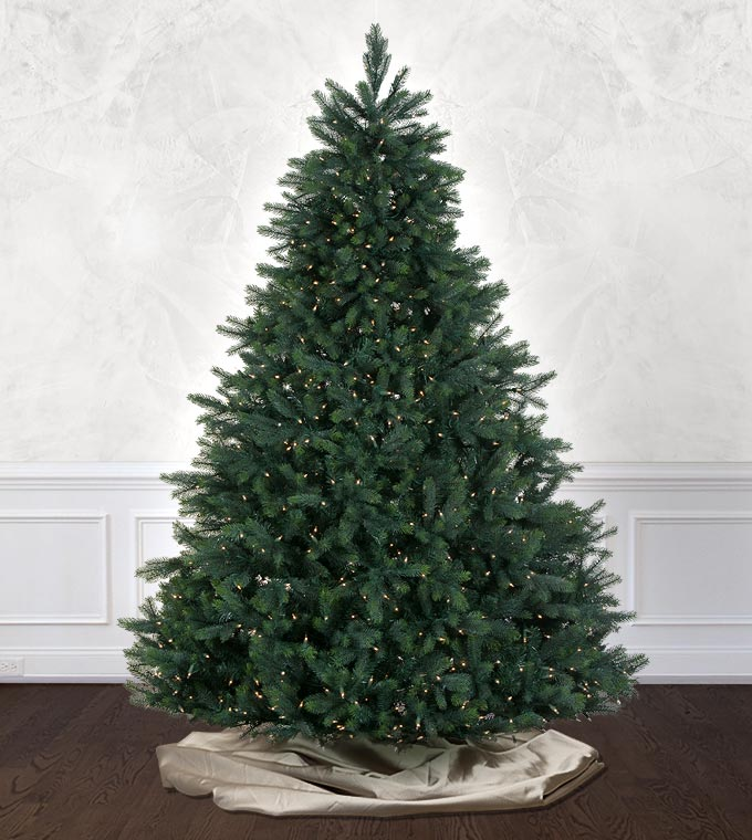 burberry fir - Artificial Christmas Trees Sale