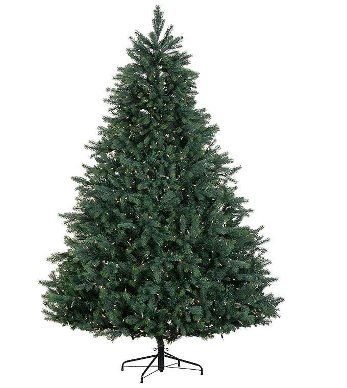 Burberry Fir Artificial Christmas Trees | Treetime - Platinum ...