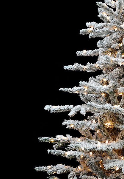 Layered Lucerne Flocked Artificial Christmas Trees Treetime