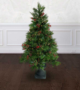 Potted Berry Pine